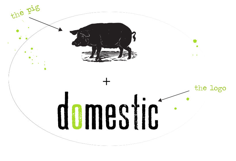 domestic logo
